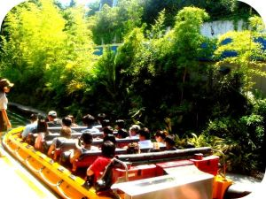 The jurassic park ride